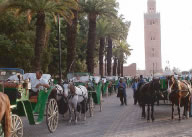marrakech_couchi